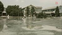 Typhoonclub