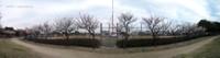 Ax250_panorama