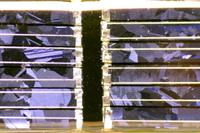 Mpws_solar_cell