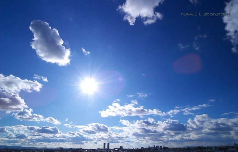 Sky091103sun
