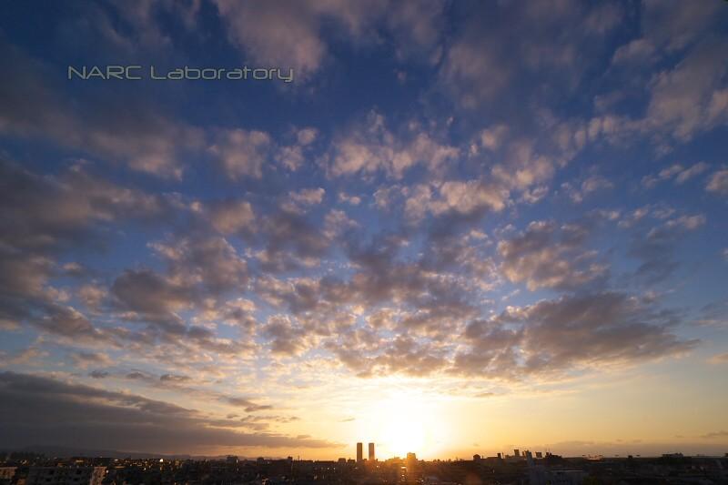 Sunset091206
