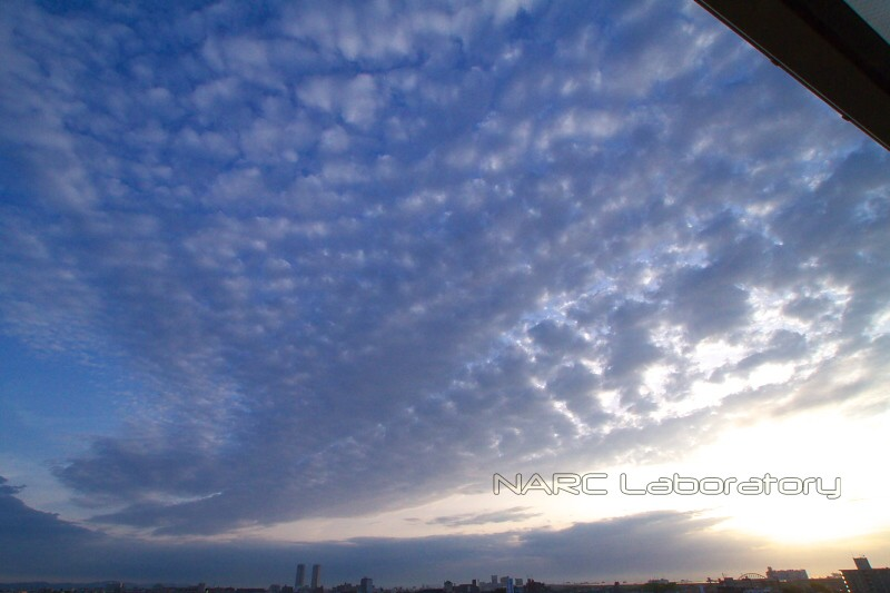 Sunset110507