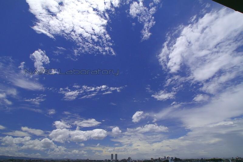 Sky110626