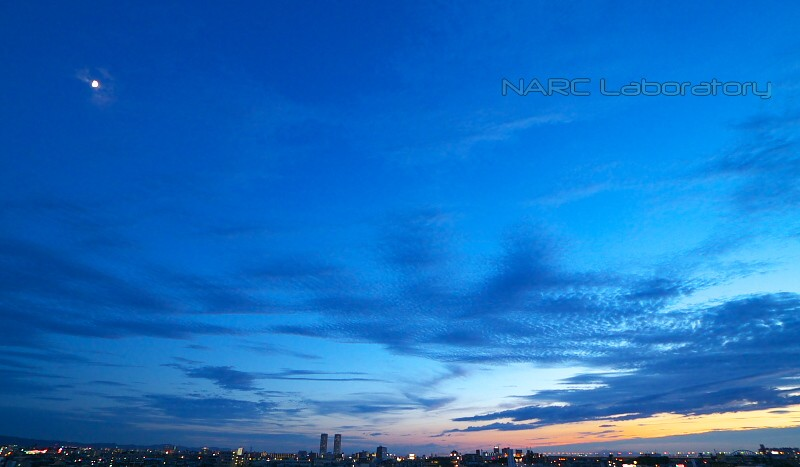 Sunset110709