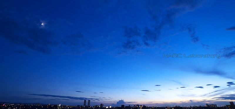 Sunset110806