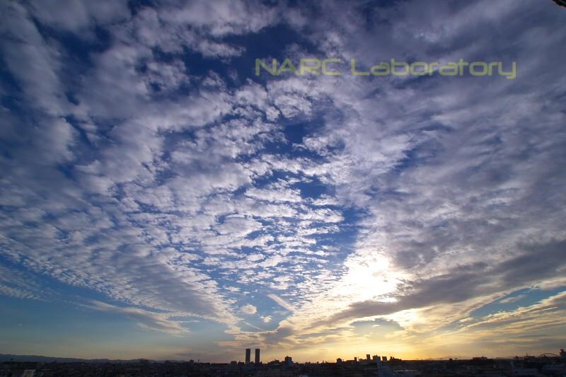 Sunset111001