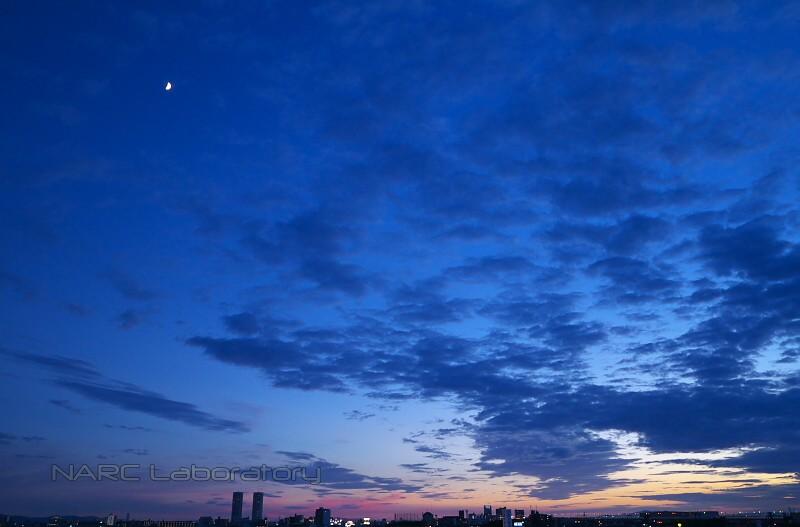 Sky130715