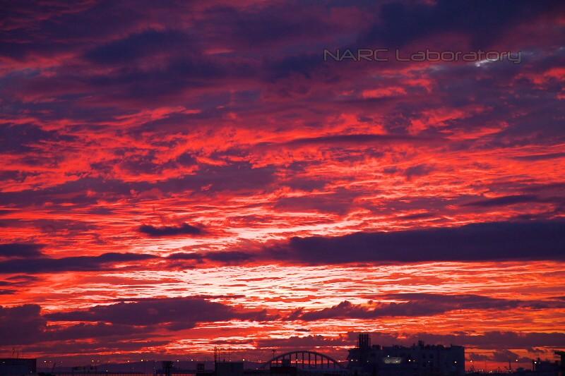Sky130908