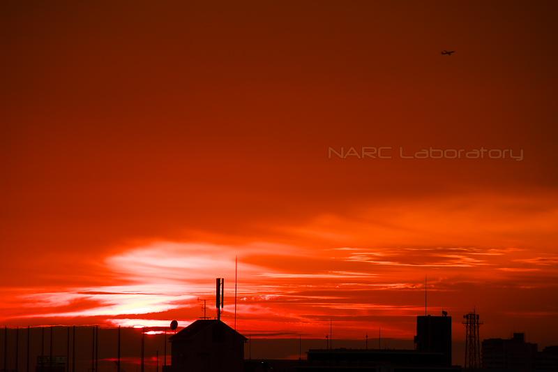 Sunset20191110